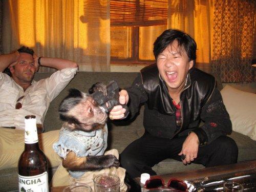 man holding gun to monkey's head, hangover