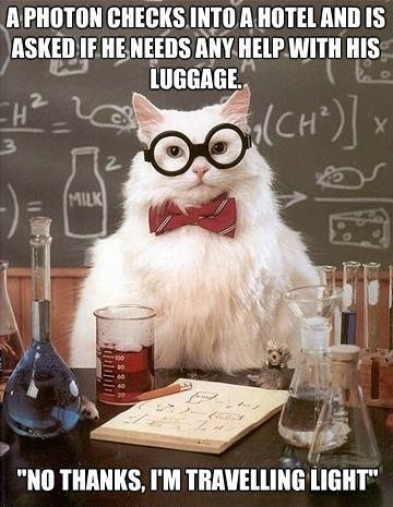 science cat, meme