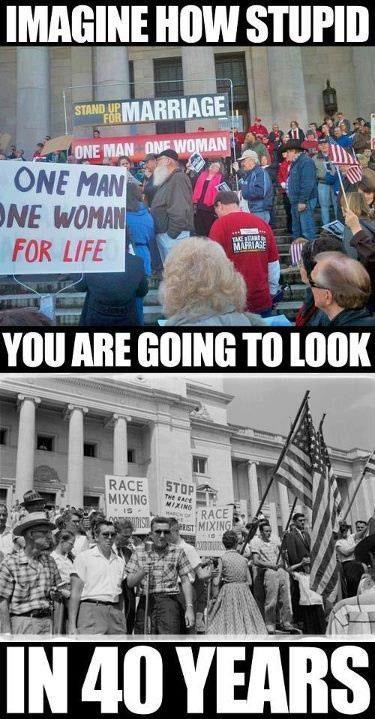 politics, fail, protest, same sex marriage, race mixing