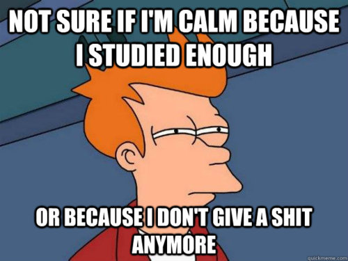 not sure if I'm calm because I studied enough or because I don't give a shit anymore, skeptical fry, futurama, meme