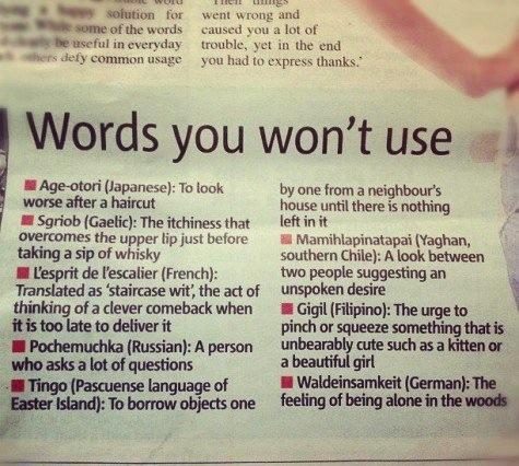 language, funny, wordplay