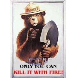 only you can kill it with fire, smokey the bear