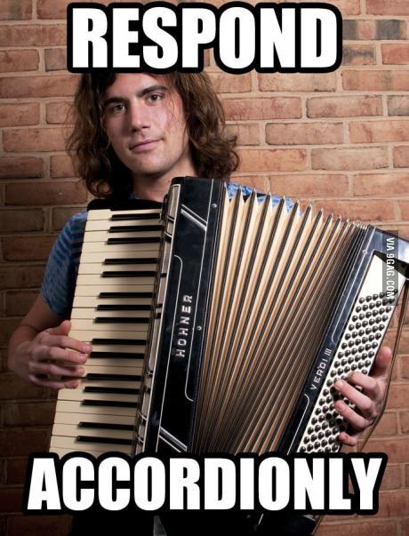 Pun, Accordion, meme