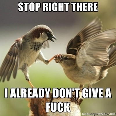 stop right there, I already don't give a fuck, bird holding other bird's mouth shut with claw, meme