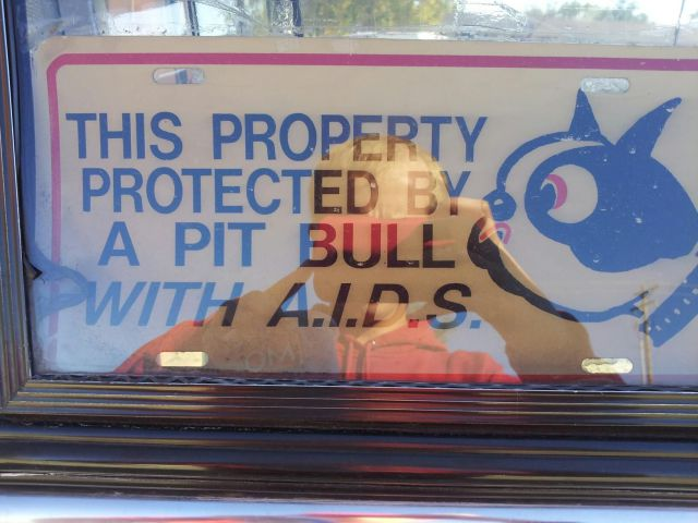 sign, aids, pitbull, security