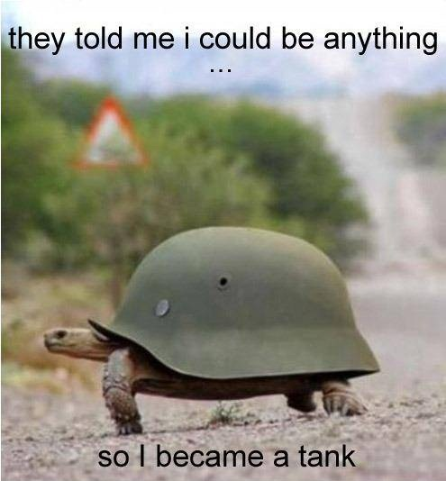 meme, turtle, tank, be anything