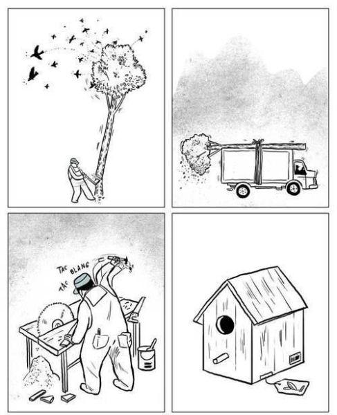 fail, human, tree, bird