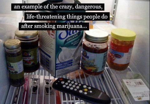 marijuana, drugs, meme, fridge, remote