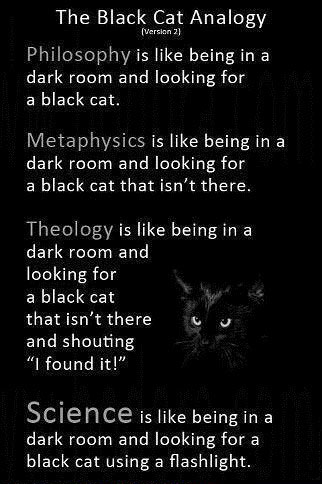 the black cat analogy, science, theology, philosophy