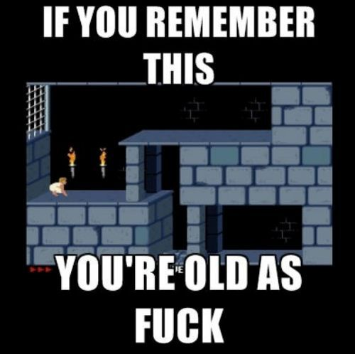 video game, old, meme, prince of persia