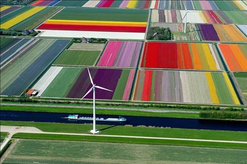 netherlands, art, real, farm, field