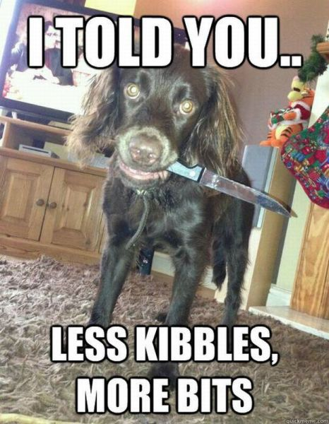 I told you, less kibbles, more bits, angry dog holding knife in mouth
