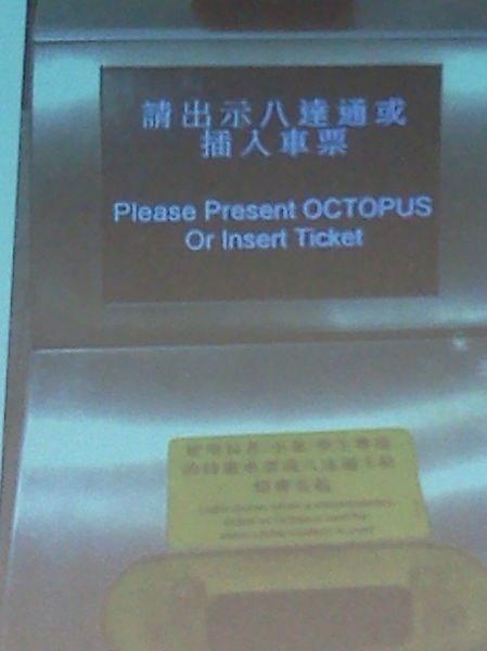 wtf, octopus, screen, display