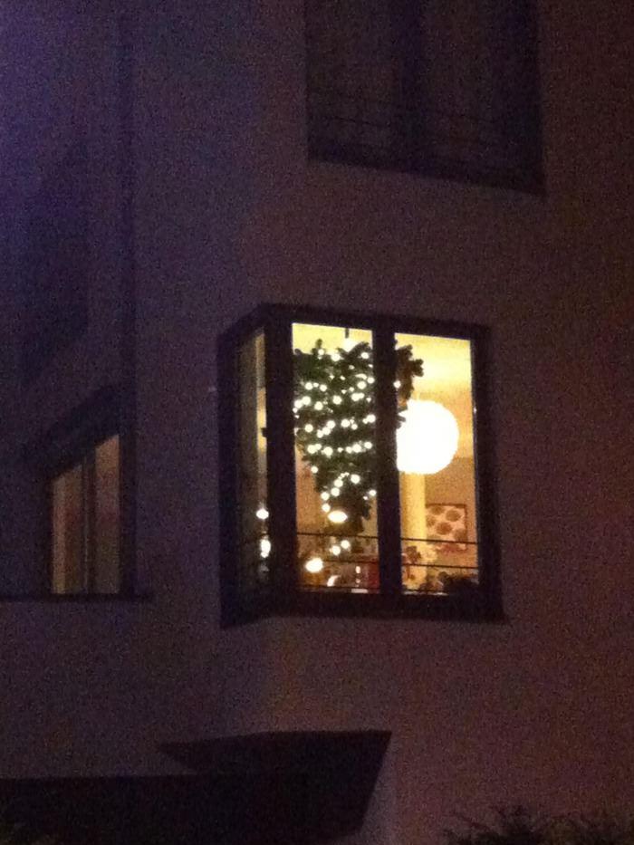 christmas, wtf, tree