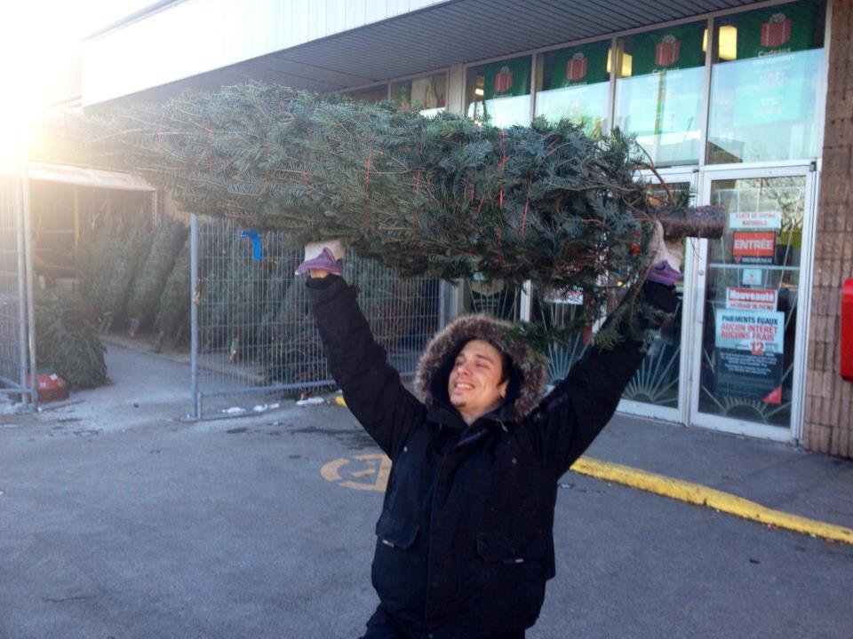 christmas, tree, hunting, satisfaction, murder