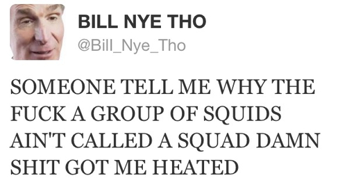 someone tell me why the fuck a group of squids ain't called a squad, damn shit got me heated, bill nye tho