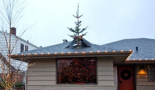 tree, roof, wtf, fail, win, christmas
