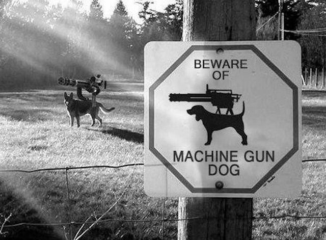 beware of machine gun dog, Before sharks with frickin' lasers, Dr Evil came up with some other ideas