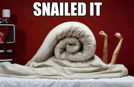 meme, snail, bed