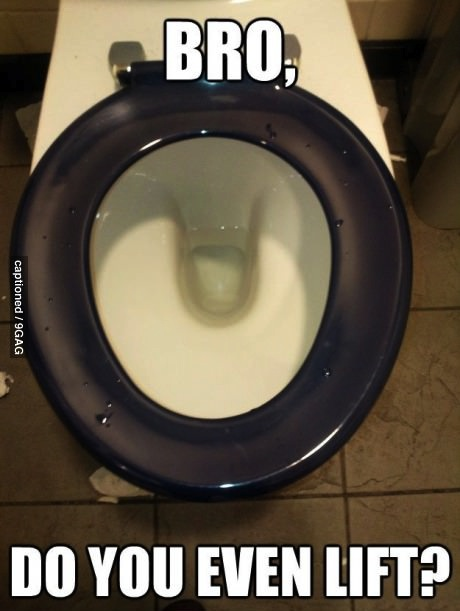 bro, do you even lift the toilet seat, world play, meme