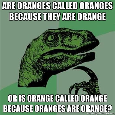 are oranges called oranges because they are orange, or is orange called orange because oranges are orange, philoceraptor, meme