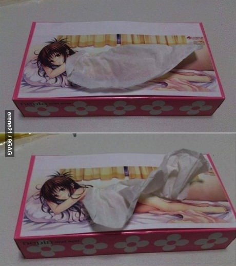 tissue, kleenex, win, japan, anime