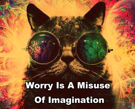 worry, misuse, imagination, cat, psychedelic