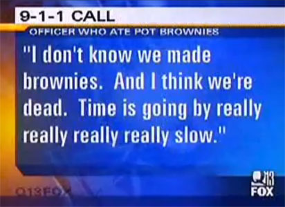 pot, brownies, weed, cop, news, fox