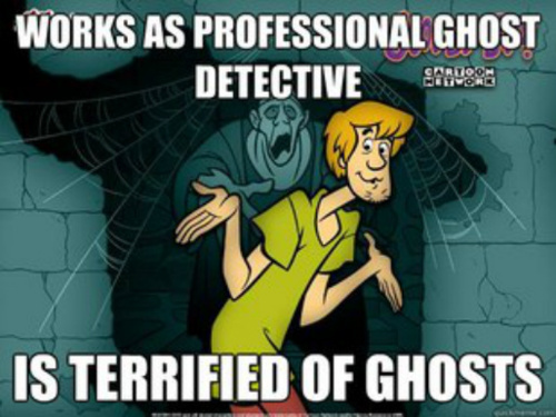 scooby doo, shaggy, meme, ghost detective, fear, afraid