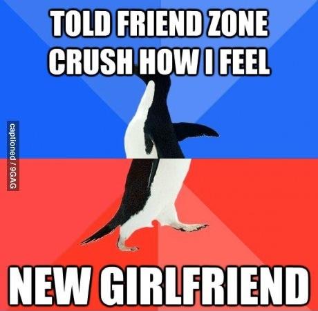 meme, penguin, crush, friend zone