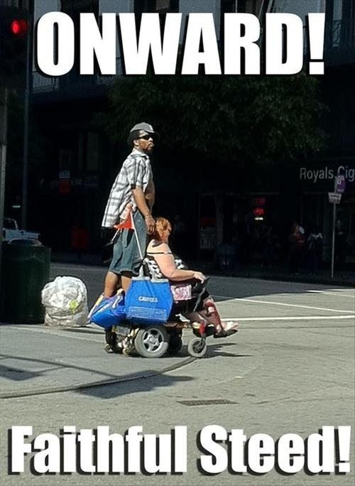 onward faithful steed!, meme, wtf, man riding wive's wheelchair
