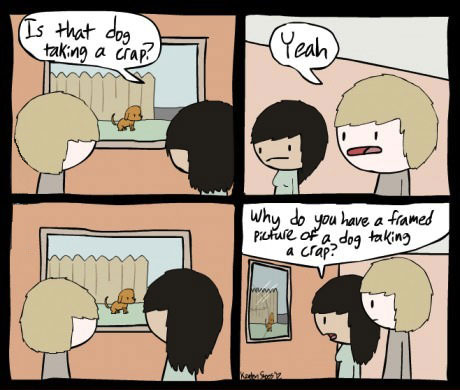 comic, joke, dog, window, picture