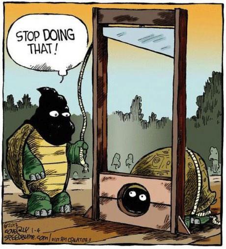 turtle, comic, guillotine