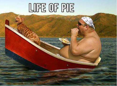 life of pi, boat, wtf, cat, fat, eat