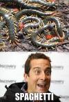 bear grylls, spaghetti, insects, bugs