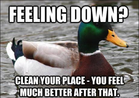 feeling down?, clean your place and you will feel much better after that, actual advice mallard, meme