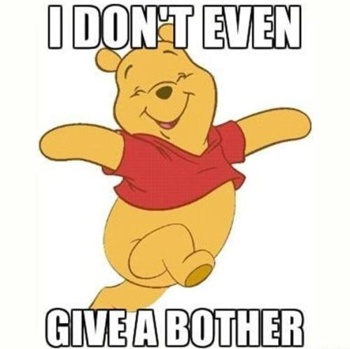 winnie the poo, bother, meme