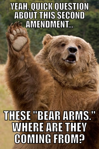 yeah quick question about this second amendment, these bear arms where are they coming from?