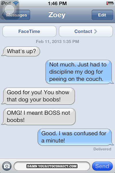 dyac, boobs, boss, dog, iphone