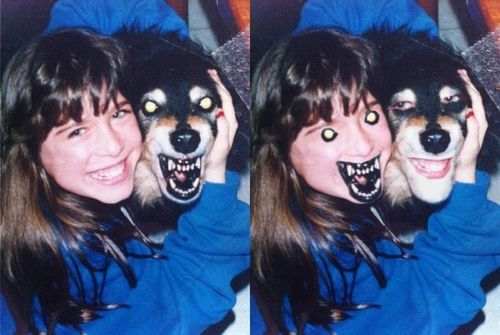 dog, face swap, mouth, eyes, wtf, scary