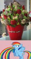 sweet flowers edible valentine bouquet, vomiting and defecating rainbows