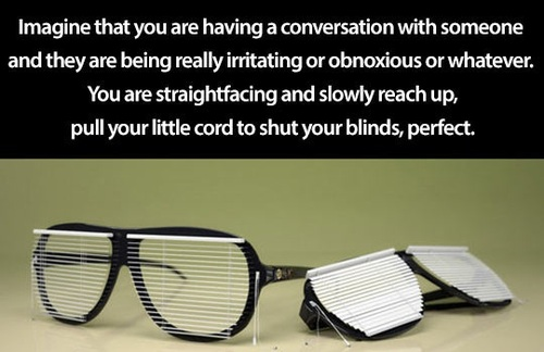image that you are having a conversation with someone and they are being really irritating or obnoxious or whatever, you are straight facing and slow reach up, pull your little cord to shut your blinds, perfect