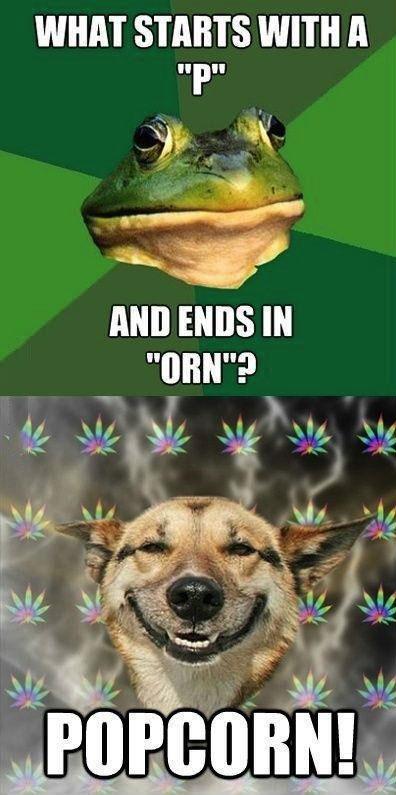 porn, popcorn, frog, stoner dog