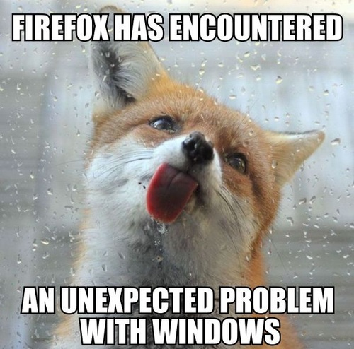 firefox has encountered an unexpected problem with windows, meme