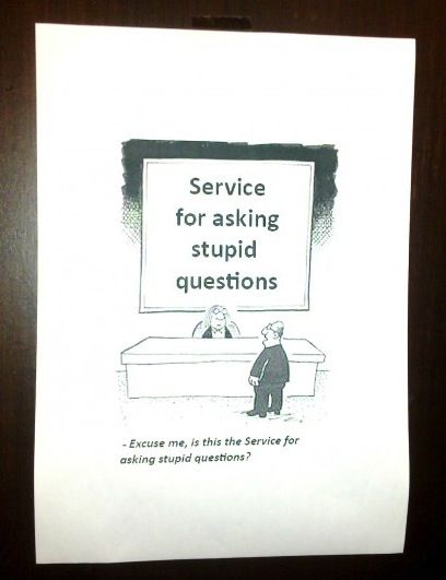 service for asking stupid questions, excuse me is this the service for asking stupid questions?
