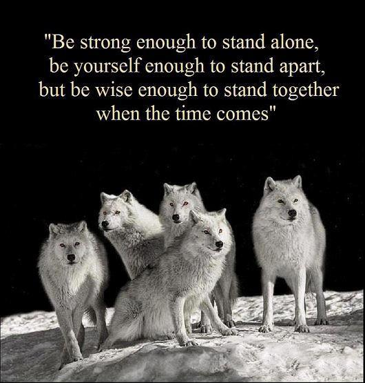 together, alone, strong, wolf pack