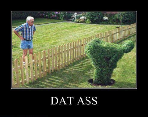 motivation, dat ass, bush, sculpture