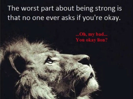 the worst part about being strong is that no one ever asks if you're okay, oh my bad you okay lion?
