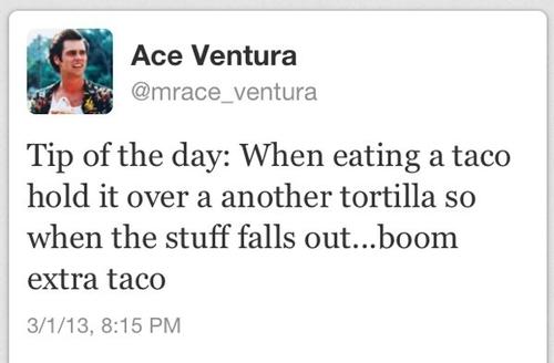 twitter, ace ventura, taco