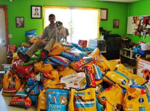 dog, chow, food, mountain, wtf